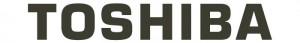 toshiba-energie-renouvelable-labat